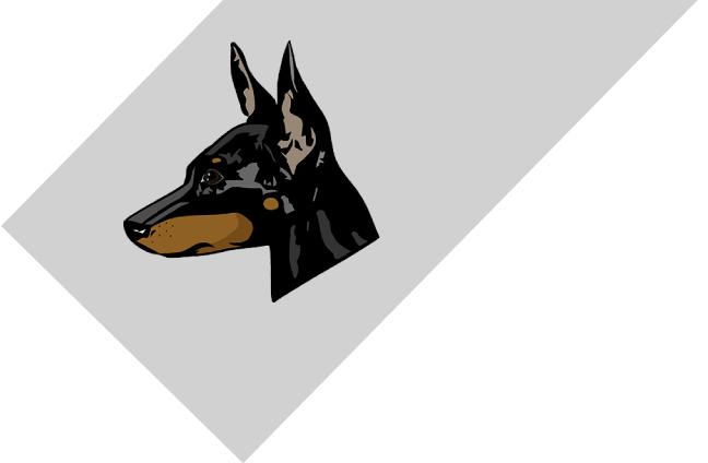 English Toy Terrier Club (Black & Tan)
